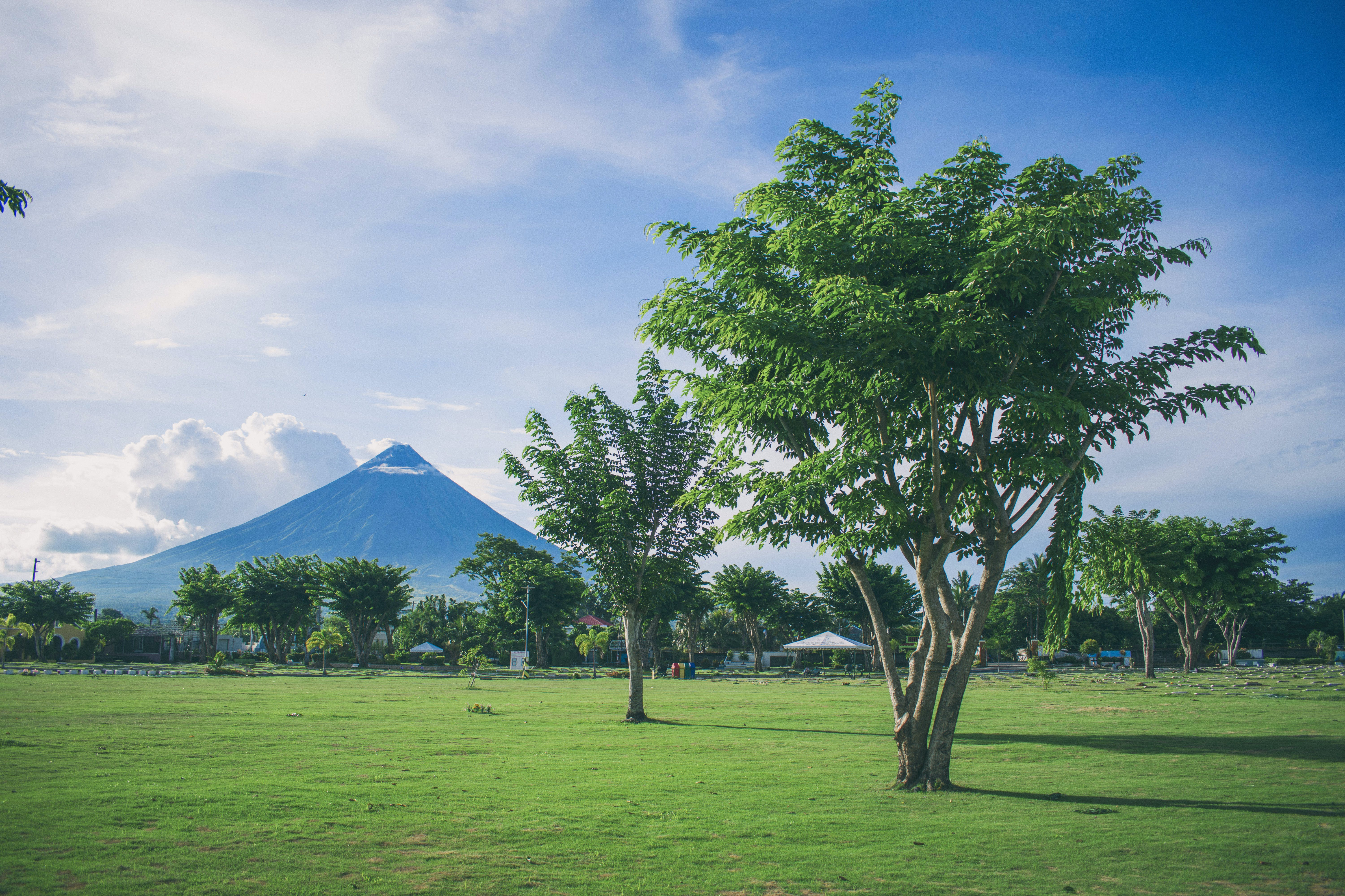 Landscape Photography of Open Field With Tree With Mayon Volcano Background