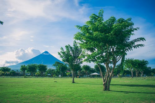 Kostenloses Stock Foto zu bäume, berg, blauer himmel, feld