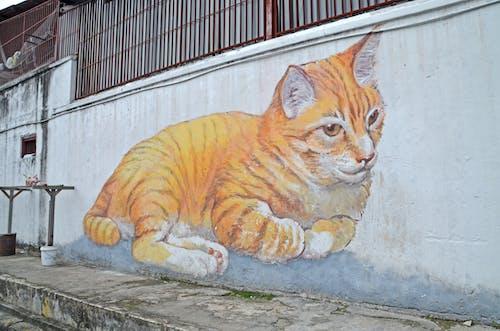 Ingyenes stockfotó macska falfestmény témában