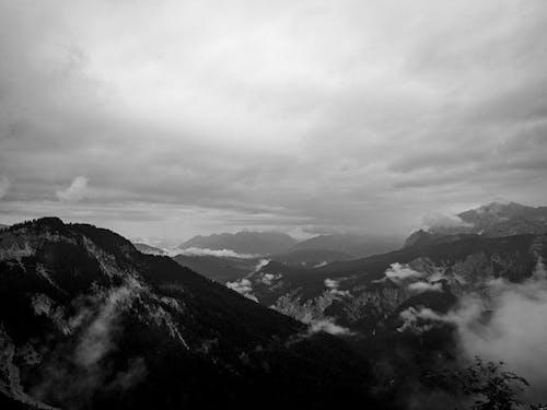 冬季, 單色, 天性 的 免费素材图片