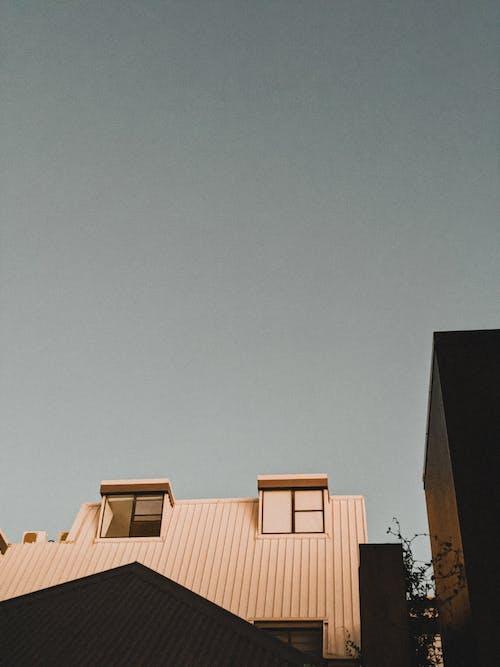 @户外, 光, 光線 的 免费素材图片