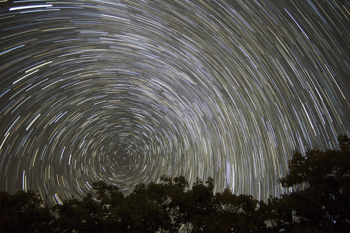 Timelapse Photo of Trees Under A Starry Sky