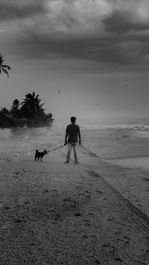 Man and Dog Walking on Beach