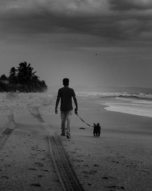 Man in Black Jacket Walking With Black Labrador Retriever on Beach Shore