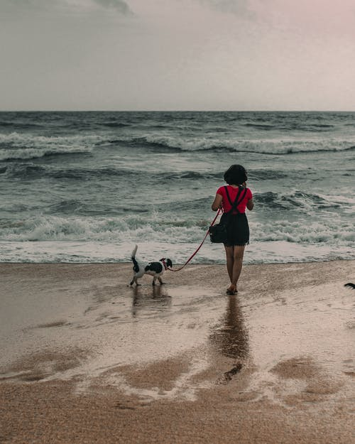 Woman in Red and Black Jacket and Black Pants Standing on Beach Shore With Dog during