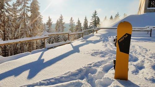 Fotobanka sbezplatnými fotkami na tému prietok, rozprávková zimná krajina, slnečný, slnečný deň