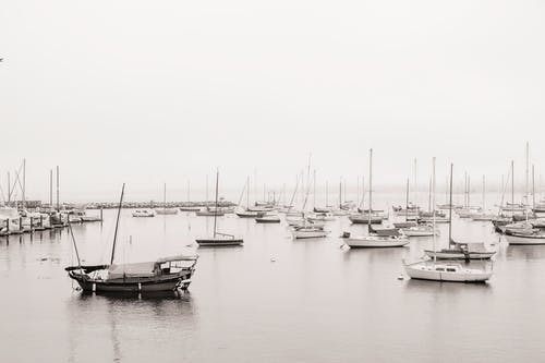 Grayscale Photo of Sailboats on the Harbour