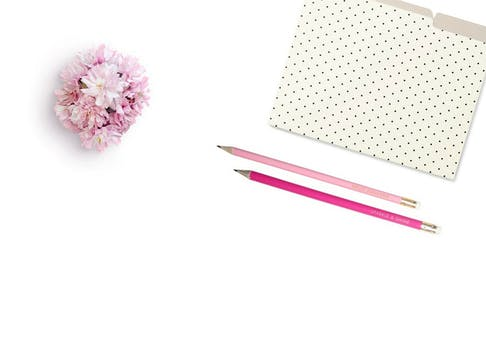 1000 engaging flowers white background photos pexels free stock pink petaled flower beside two pink pens mightylinksfo