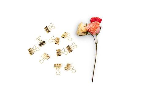 Kostenloses Stock Foto zu romantisch, blumen, büroklammern, rosen