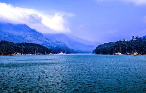 Foto d'estoc gratuïta de aigua, arbres, cel, fotografia de natura