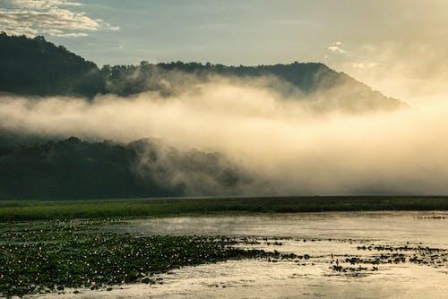 Imagine de stoc gratuită din apă, apus, ceață