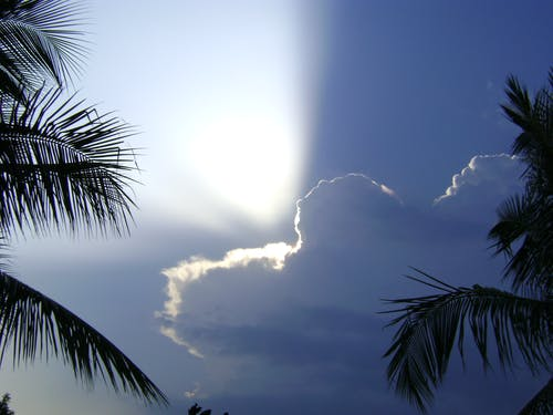 Free stock photo of sunbeams