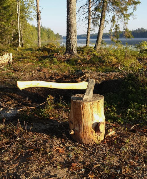 Free stock photo of axe, Finland, forest, järvi