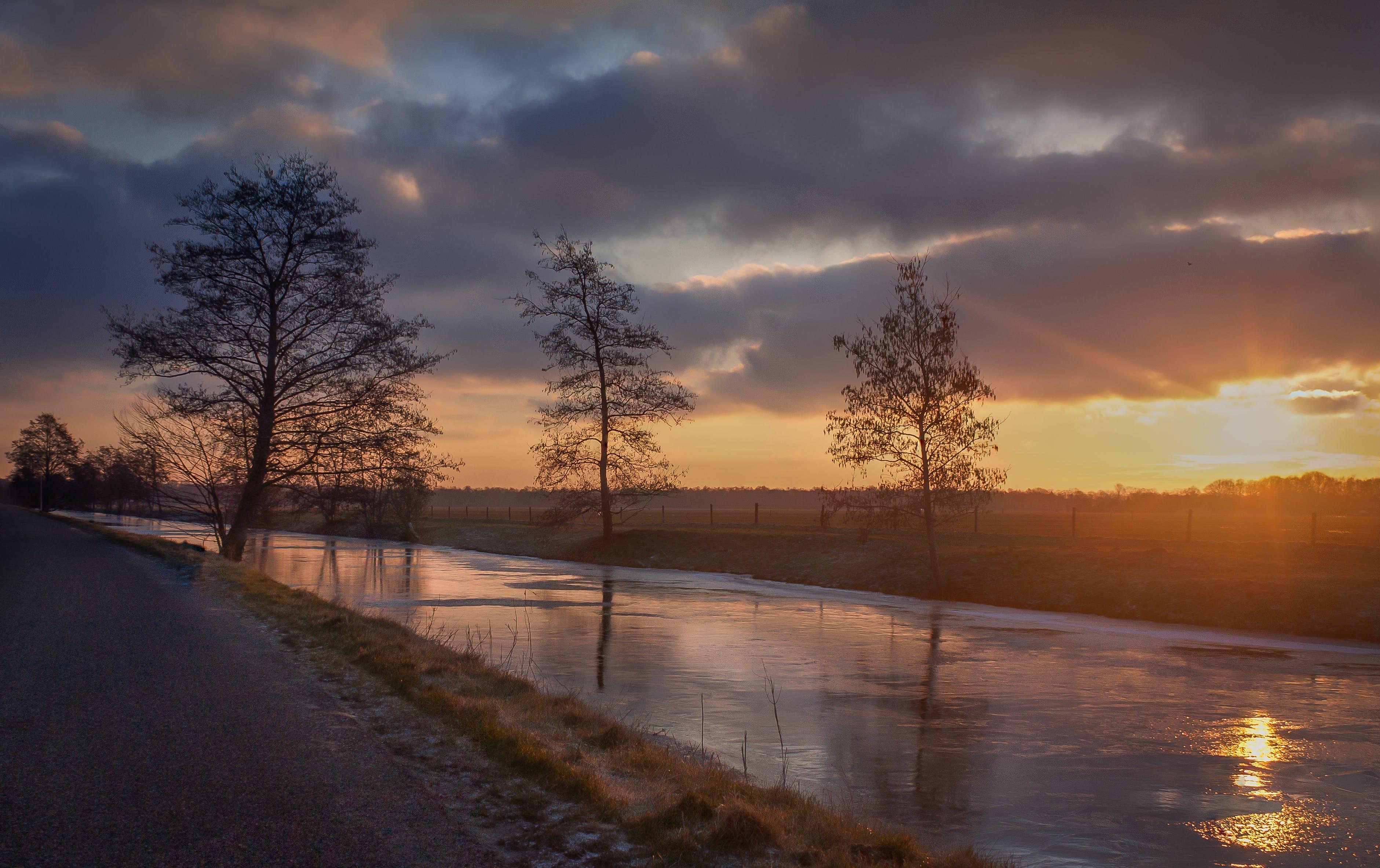 Kostenloses Stock Foto zu kalt, landschaft, natur, winter