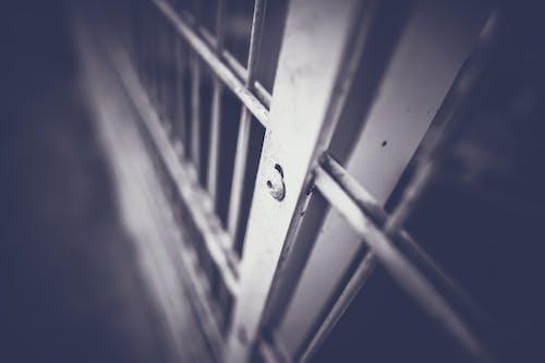 Gratis lagerfoto af port, skrue, sort og hvid, sort-hvid