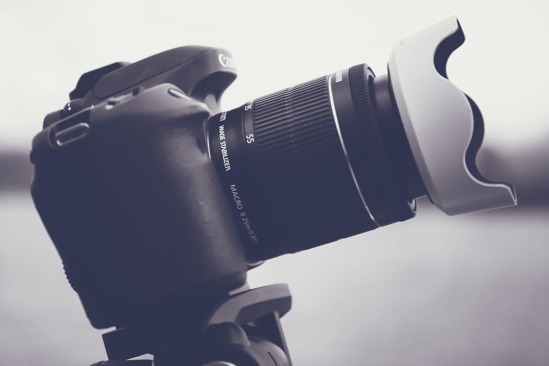 Canon, DSLR, великий план