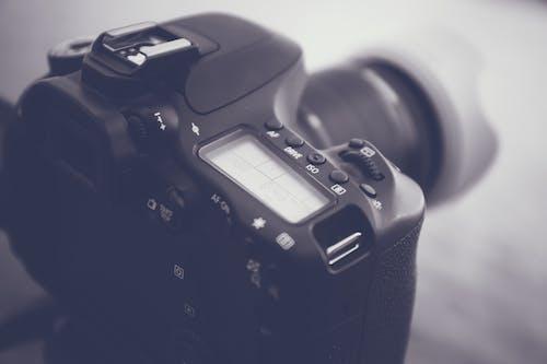 Základová fotografie zdarma na téma canon, černobílá, černobílý, digitální fotoaparát