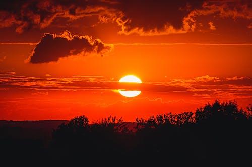 Fotos de stock gratuitas de amanecer, arboles, cielo Rojo