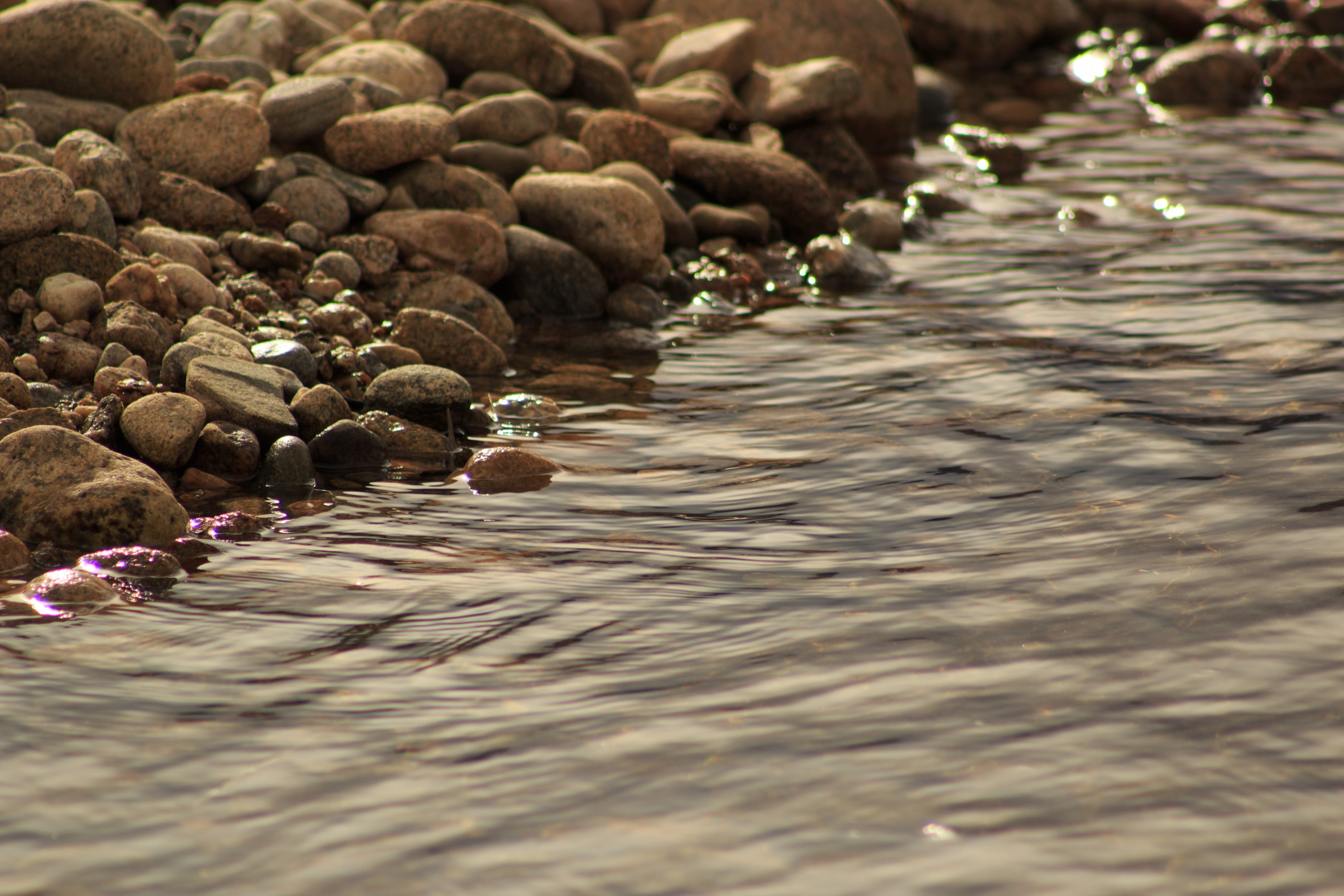 Free stock photo of stream, water
