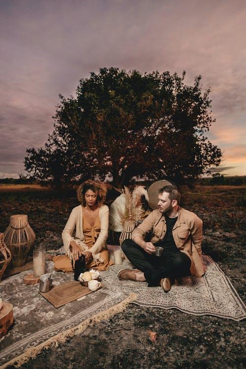 Безкоштовне стокове фото на тему «відпочинок, група, дерево»