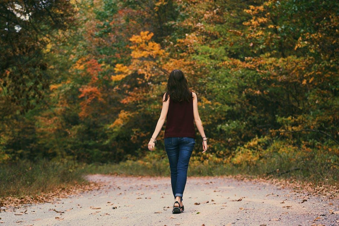 divat, erdő, fák