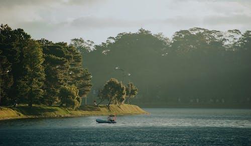Immagine gratuita di acqua, alberi, barca, luce del giorno