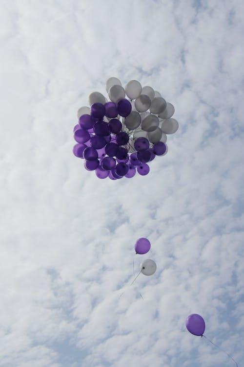 Free stock photo of air balloon