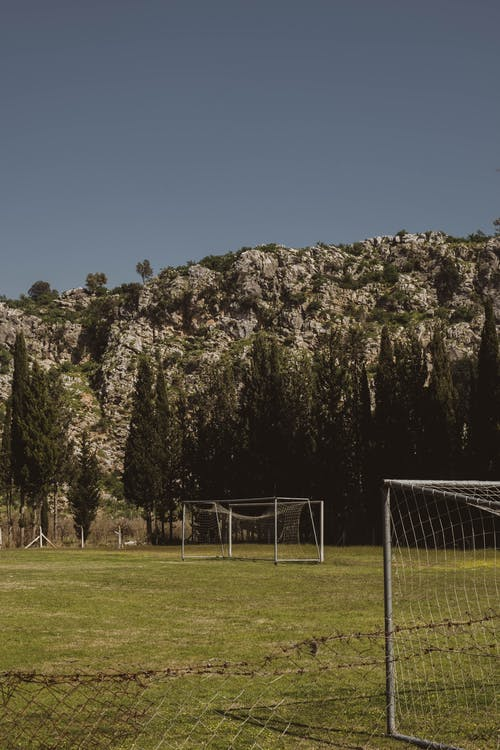Immagine gratuita di alberi, calcio, campo
