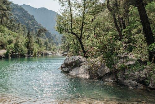 Ilmainen kuvapankkikuva tunnisteilla helpotus, järvi, joki