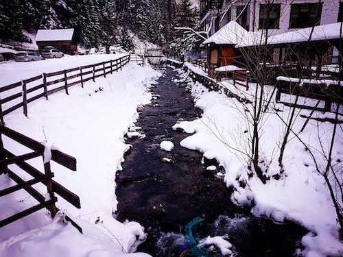 คลังภาพถ่ายฟรี ของ การแข่งขันกลางแจ้ง, การแข่งขันบนมือถือ, ฤดูหนาว, หิมะ