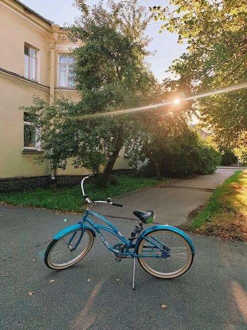 Photos gratuites de arbre, bicyclette, chaussée
