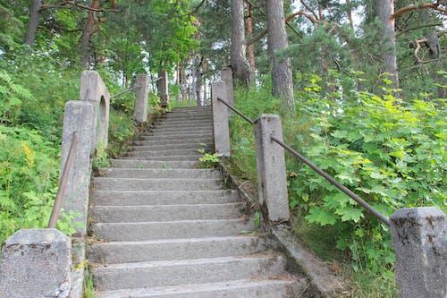 kaupunki, kiviportaat, maisema, portaat 的 免费素材照片