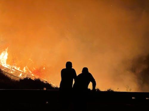 People Standing Near a Bushfire