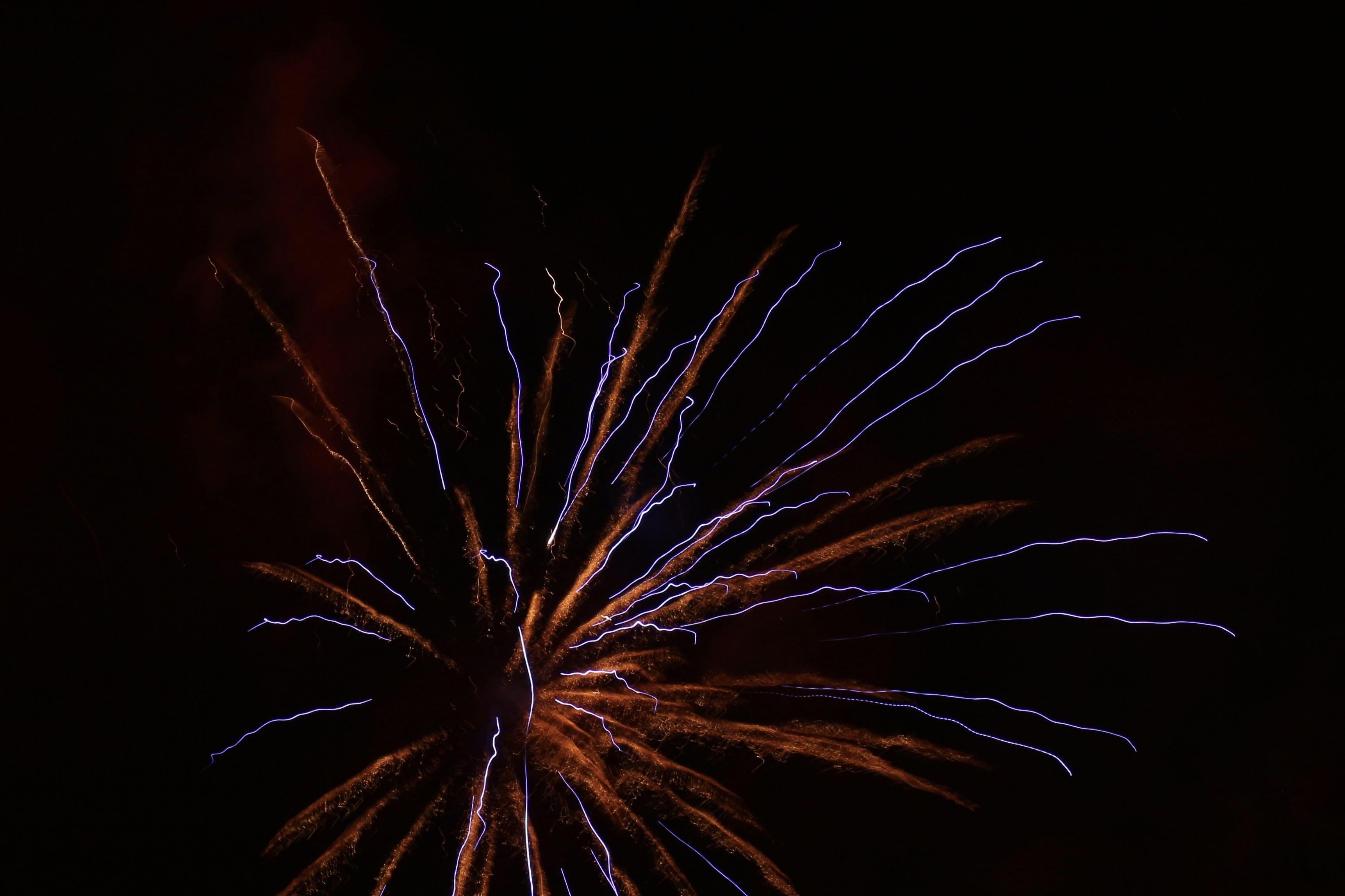 Free stock photo of blue, firework, light, lights