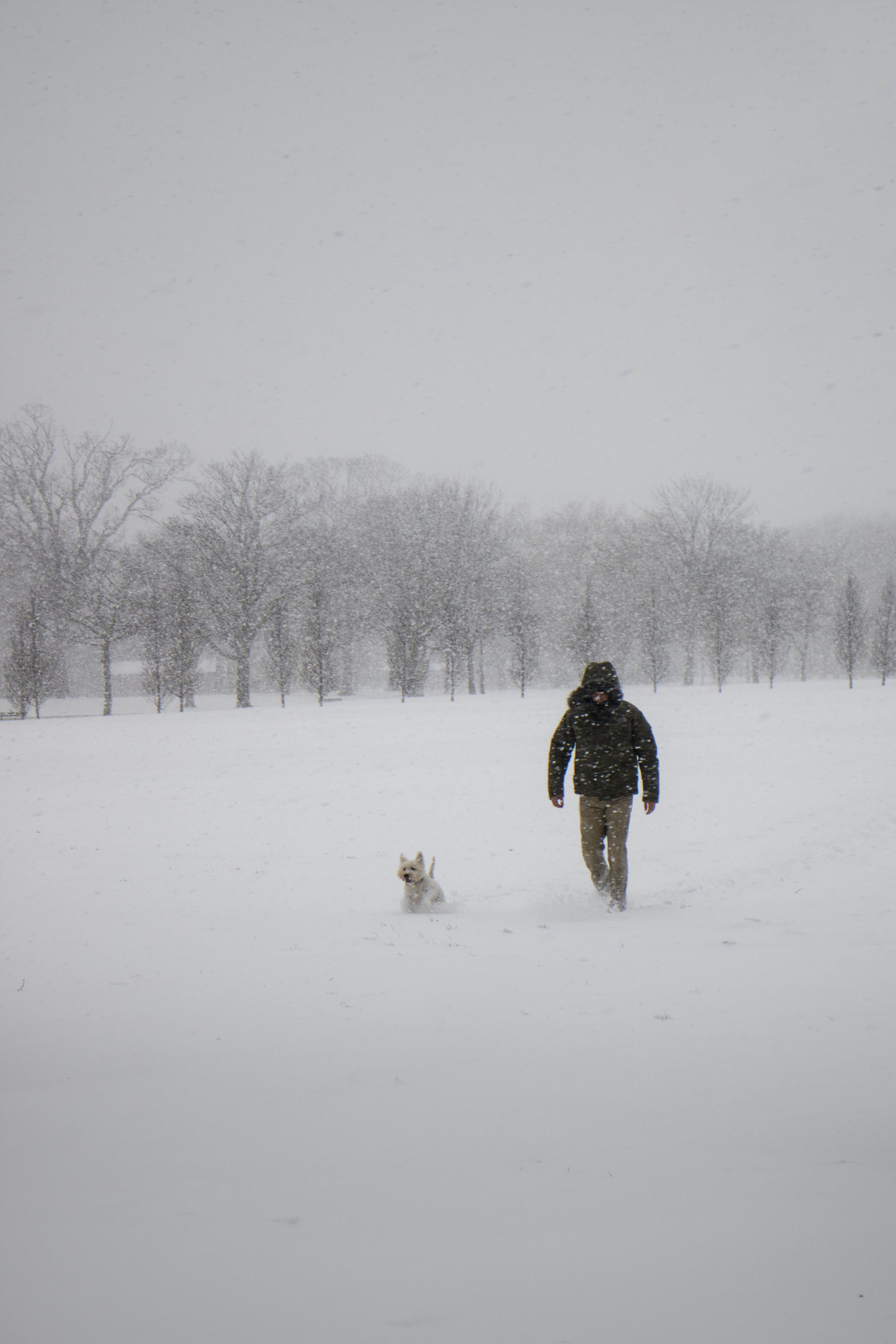 Photo of Man Wearing Black Jacket and Pants Walking on Snow