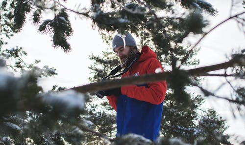 Man in Red and Blue Jacket Near Trees