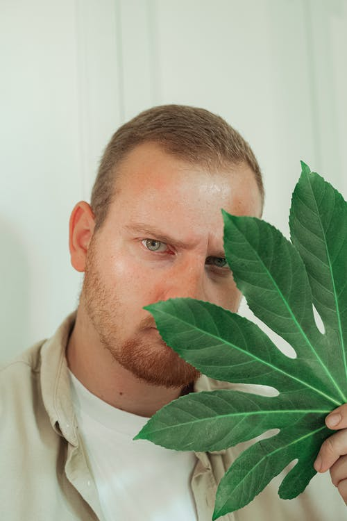 A Man Covering His Face with a Leaf