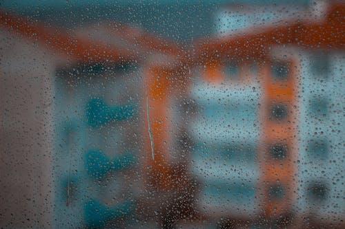 Ilmainen kuvapankkikuva tunnisteilla appelsiini, kalkkuna, kã¼tahya, sadepäivä