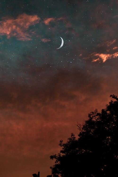 Základová fotografie zdarma na téma 4k tapeta, brzy východ slunce, estetické pozadí plochy