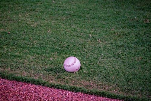Free stock photo of baseball