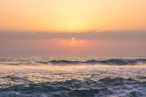 地平線, 太陽, 招手, 日出 的 免费素材照片
