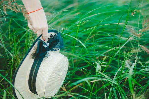 Free stock photo of black, grass, green, hand