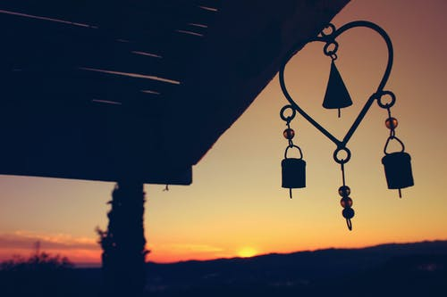 Free stock photo of enjoy, evening, evening sun