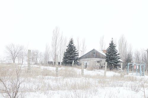 Безкоштовне стокове фото на тему «архітектура, білий, Будівля, вродлива»
