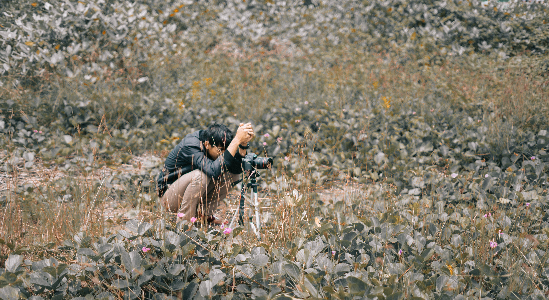 Ingyenes stockfotó fényképész, fényképezőgép, Férfi, fű témában