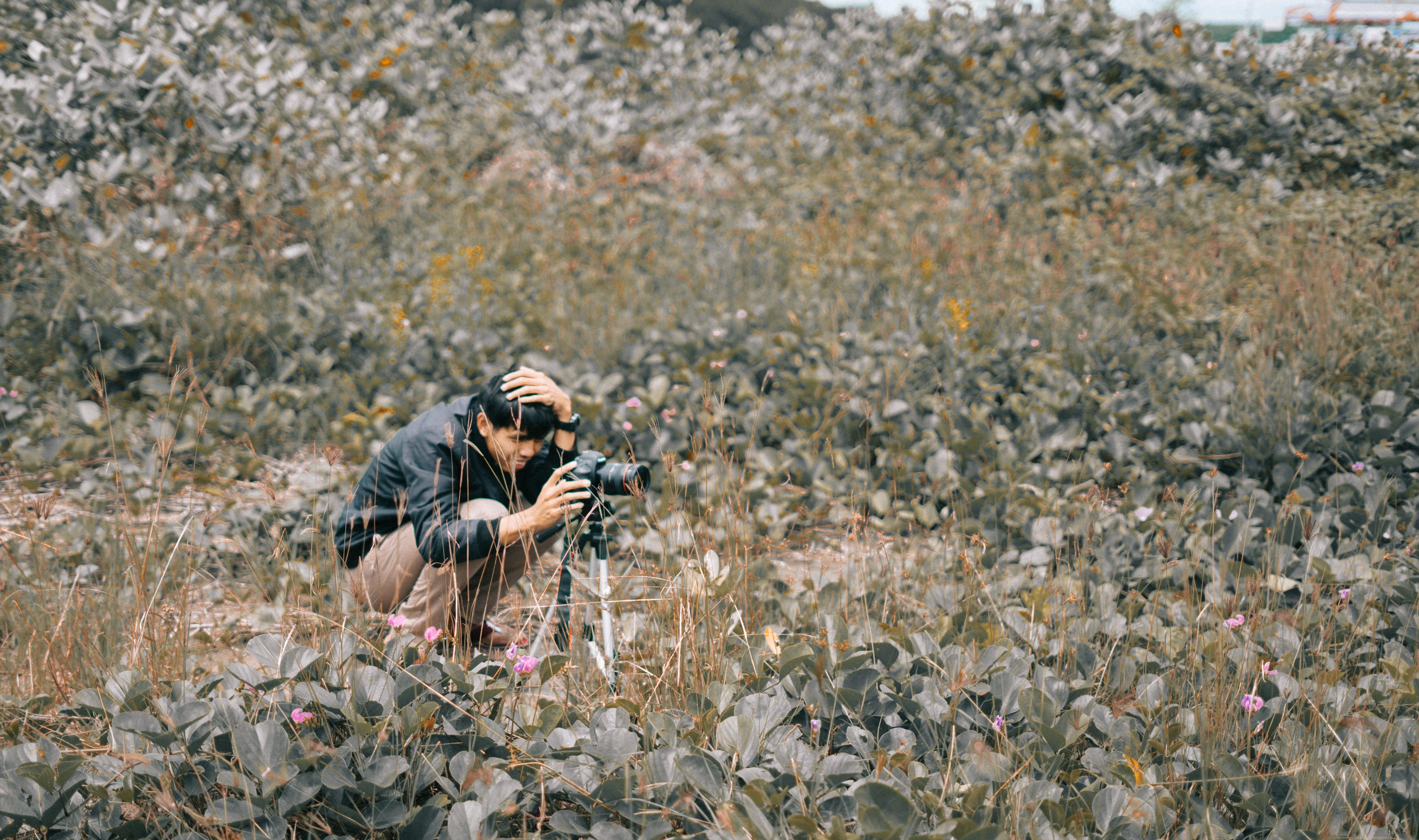 Free stock photo of man, person, camera, field