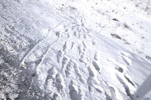 Безкоштовне стокове фото на тему «білий, візерунок, гора, день»