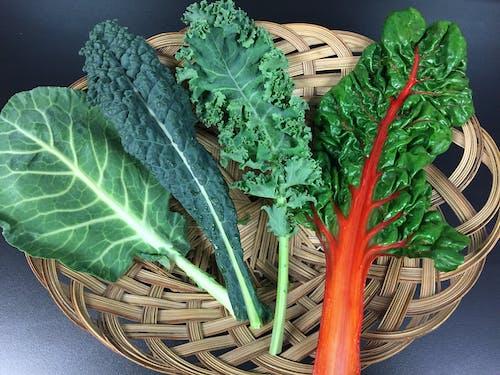 Free stock photo of collards, food, greens, kale