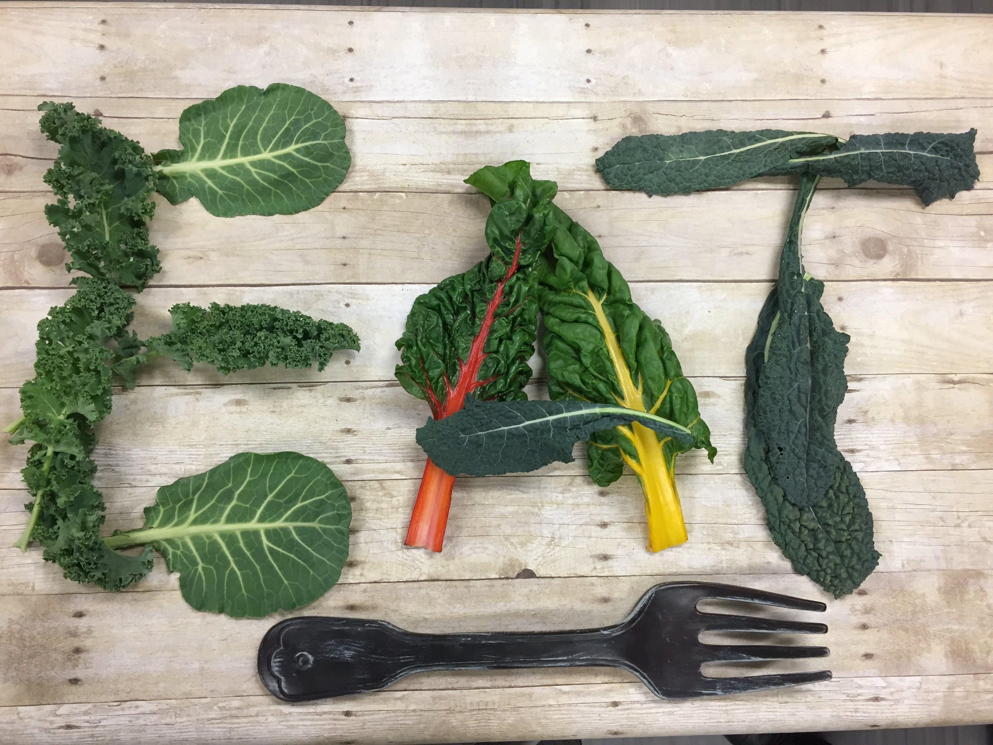 Free stock photo of food, healthy, wood, garden