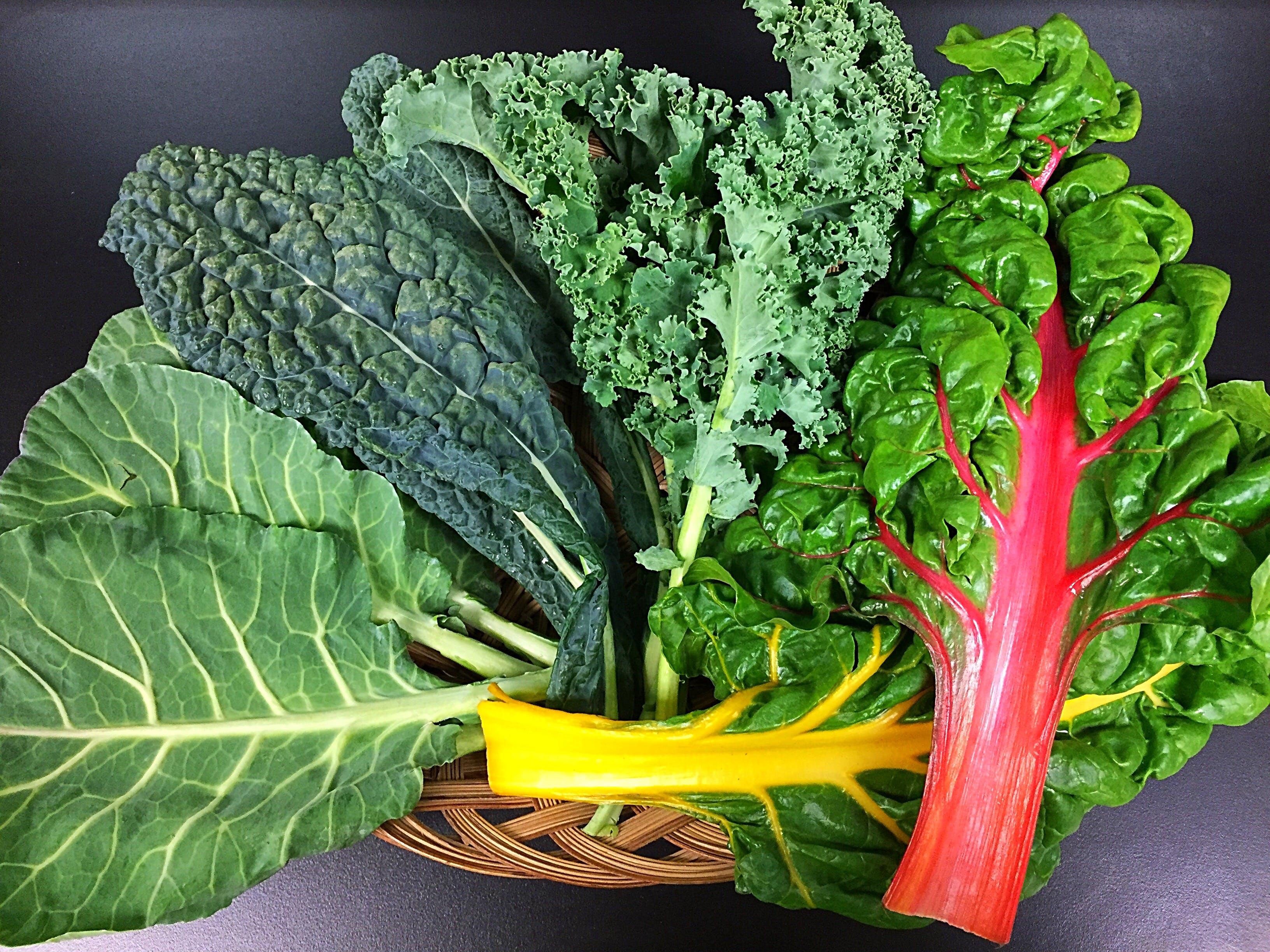 Free stock photo of food, healthy, kale, fresh